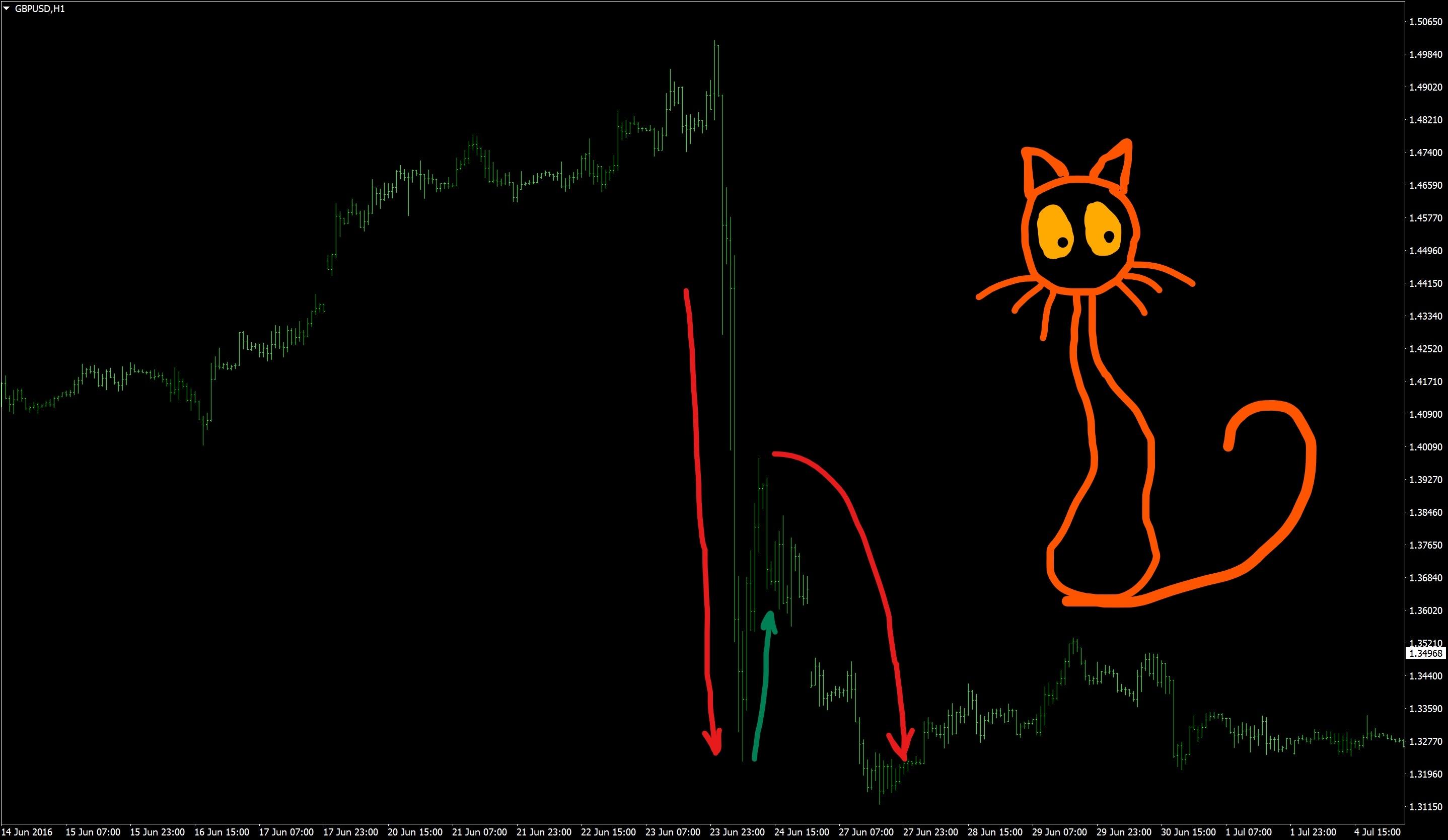 Прыжок мертвой кошки
